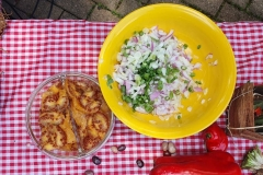 Cebolla y lulo